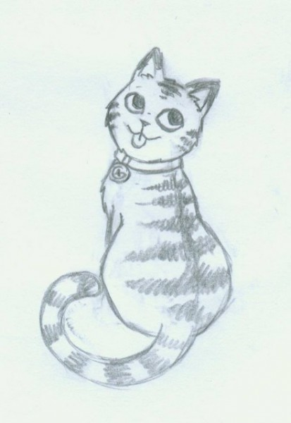 Sketch of the Caching Kitten Geocoin